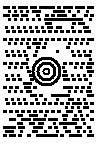 MaxiCode